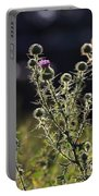 Glowing Thistle - 1 Portable Battery Charger