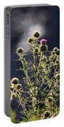 Glowing Thistle - 3 Portable Battery Charger