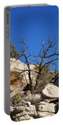 Gnarly Joshua Tree Portable Battery Charger