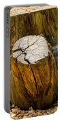 Gnarly Stump Portable Battery Charger