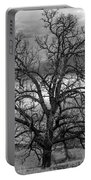 Gnarly Tree Portable Battery Charger
