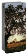Goddess Tree 2 Portable Battery Charger