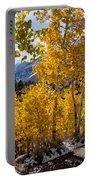 Golden Aspen On The Lake Portable Battery Charger