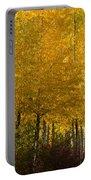 Golden Aspens Portable Battery Charger