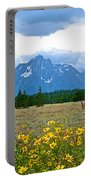 Golden Asters And Tetons From The Road In Grand Teton National Park-wyoming Portable Battery Charger