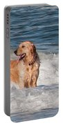 Golden At The Beach Oil Portable Battery Charger