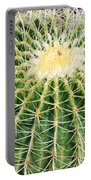 Golden Ball Cactus Portable Battery Charger
