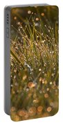 Golden Dew Drops Portable Battery Charger