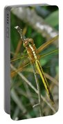 Golden Dragonfly At Rest Portable Battery Charger