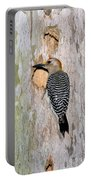 Golden-fronted Woodpecker Portable Battery Charger