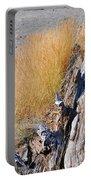 Golden Grass Portable Battery Charger