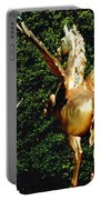 Golden Horses Portable Battery Charger