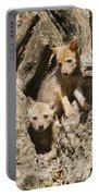 Golden Jackal Canis Aureus Cubs Portable Battery Charger