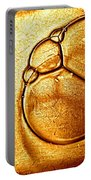Golden Ladybird Bubble Portable Battery Charger