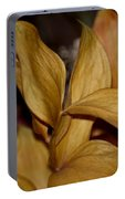 Golden Leafed Abstract 2013 Portable Battery Charger