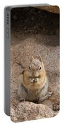 Golden Mantle Ground Squirrel Hidden Valley Rock Mountain Nation Portable Battery Charger