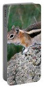 Golden Mantled Ground Squirrel Portable Battery Charger