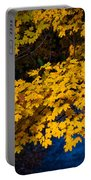 Golden Maples Portable Battery Charger