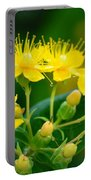 Golden Miracles Portable Battery Charger
