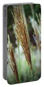 Golden Reeds Portable Battery Charger