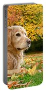 Golden Retriever Dog Autumn Day Portable Battery Charger