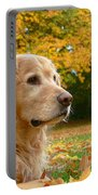 Golden Retriever Dog Autumn Leaves Portable Battery Charger by Jennie Marie Schell