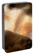 Golden Retriever Dog Quiet Time Portable Battery Charger