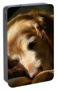 Golden Retriever Dog Sleeping In The Morning Light  Portable Battery Charger