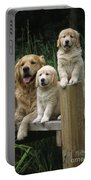 Golden Retriever Dog With Puppies Portable Battery Charger
