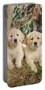 Golden Retriever Puppies In The Woods Portable Battery Charger