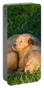 Golden Retriever Puppies Sleeping Portable Battery Charger by Linda Freshwaters Arndt