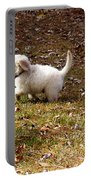 Golden Retriever Puppy Portable Battery Charger by Andrea Anderegg