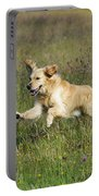 Golden Retriever Running Portable Battery Charger