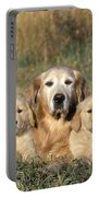 Golden Retriever With Puppies Portable Battery Charger