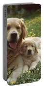 Golden Retrievers Dog And Puppy Portable Battery Charger