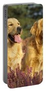 Golden Retrievers Dogs Portable Battery Charger