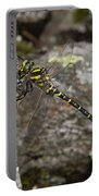Golden-ringed Dragonfly Portable Battery Charger