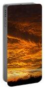 Golden Saguaro Portable Battery Charger