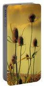 Teasels Reach For The Golden Sky Portable Battery Charger