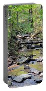 Golden Spring Waters Of Hurricane Branch Portable Battery Charger