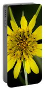 Golden Star Flower Yellow Salsify Glacier National Park Portable Battery Charger