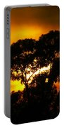 Golden Sunset... Portable Battery Charger