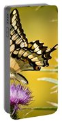 Golden Swallowtail Portable Battery Charger