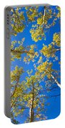 Golden View Looking Up Portable Battery Charger