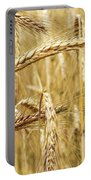 Golden Wheat  Portable Battery Charger
