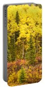 Golden Yellow Fall Boreal Forest In Yukon Canada Portable Battery Charger