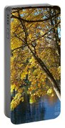 Golden Zen Portable Battery Charger