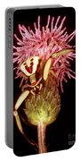 Goldenrod Crab Spider Portable Battery Charger