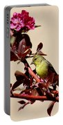 Goldfinch In Tree 031015aa Portable Battery Charger