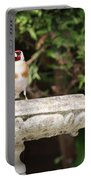 Goldfinch On Birdbath Portable Battery Charger